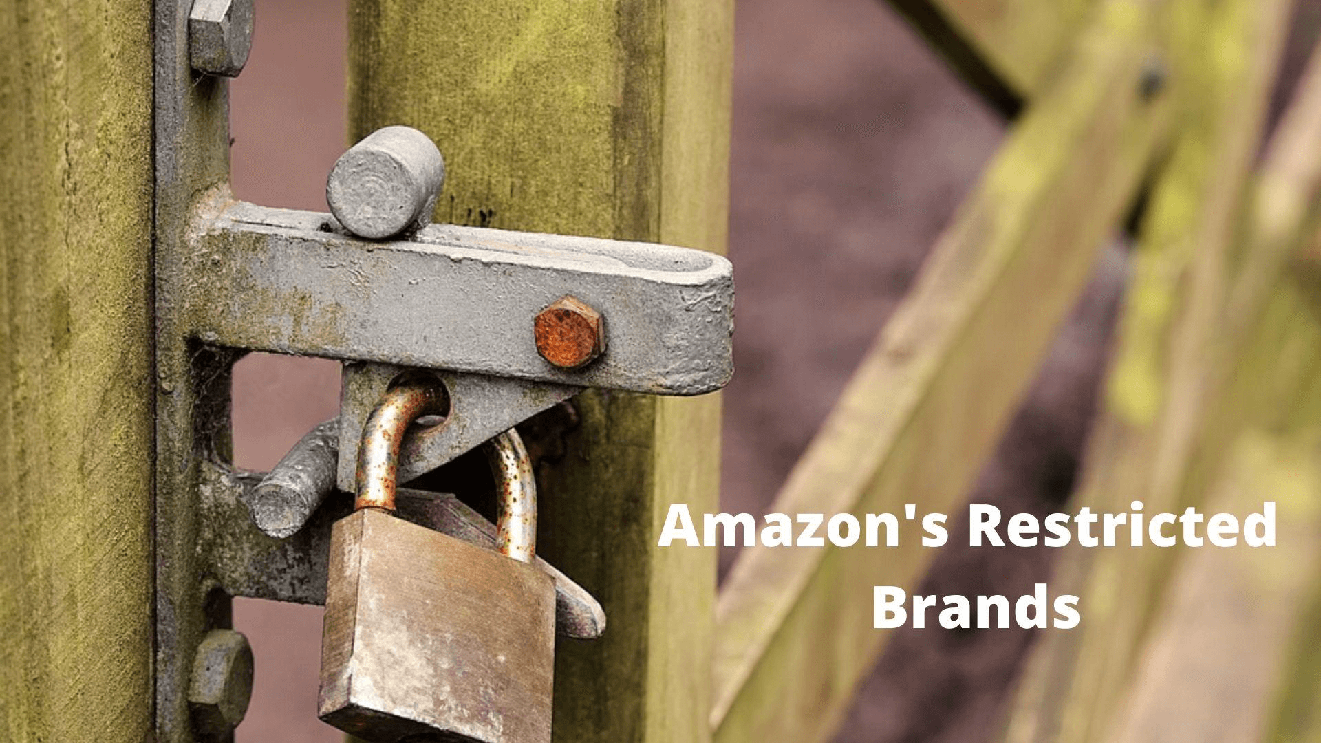 Amazon Restricted Brands.png